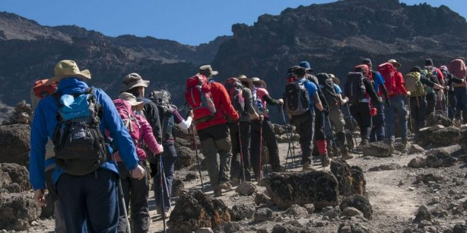 Kilimanjaro 10 Days Lemosho