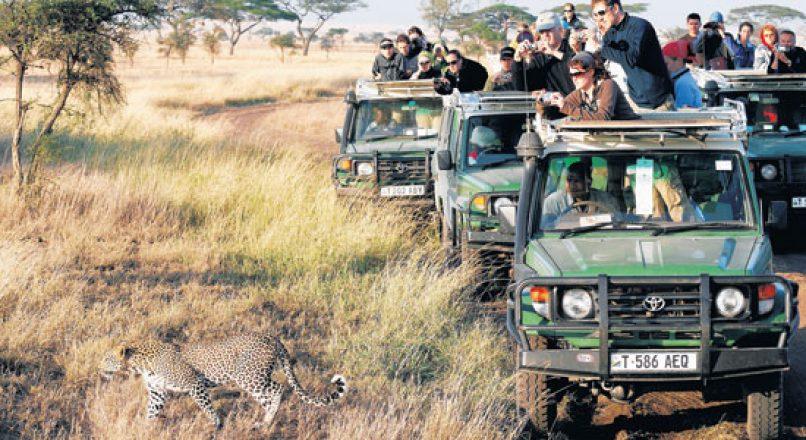How to get to Ngorongoro  | Arusha Tours